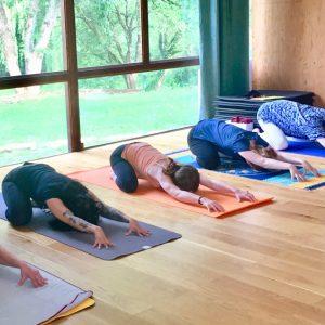 Stage de Yoga organisé à Orléans